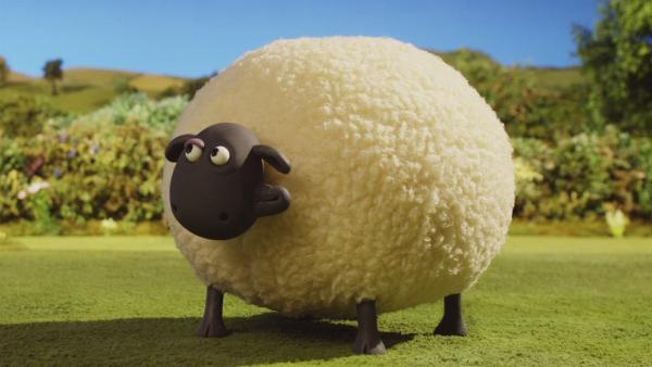 Folgenübersicht Shaun Das Schaf